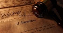 David and Carl Janavitz Fellowship in First Amendment Law